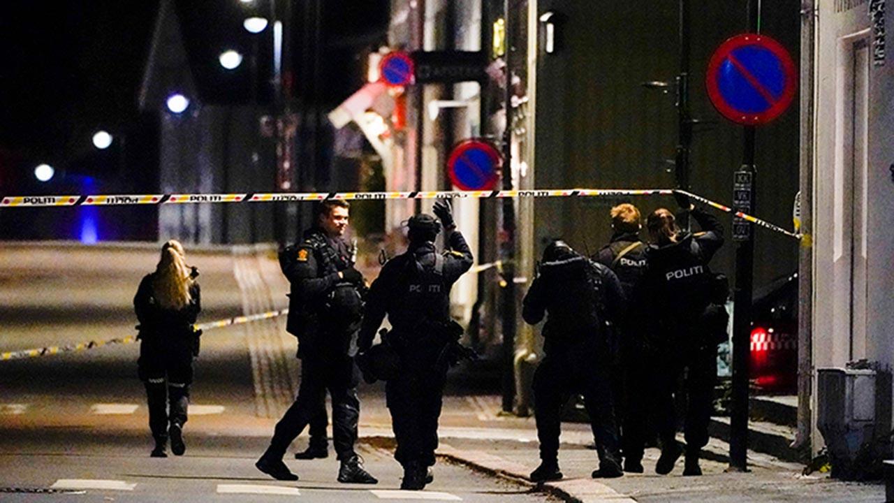 Norveç saldırısını kim yaptı, saldırgan nereli, neden saldırı yapıldı?