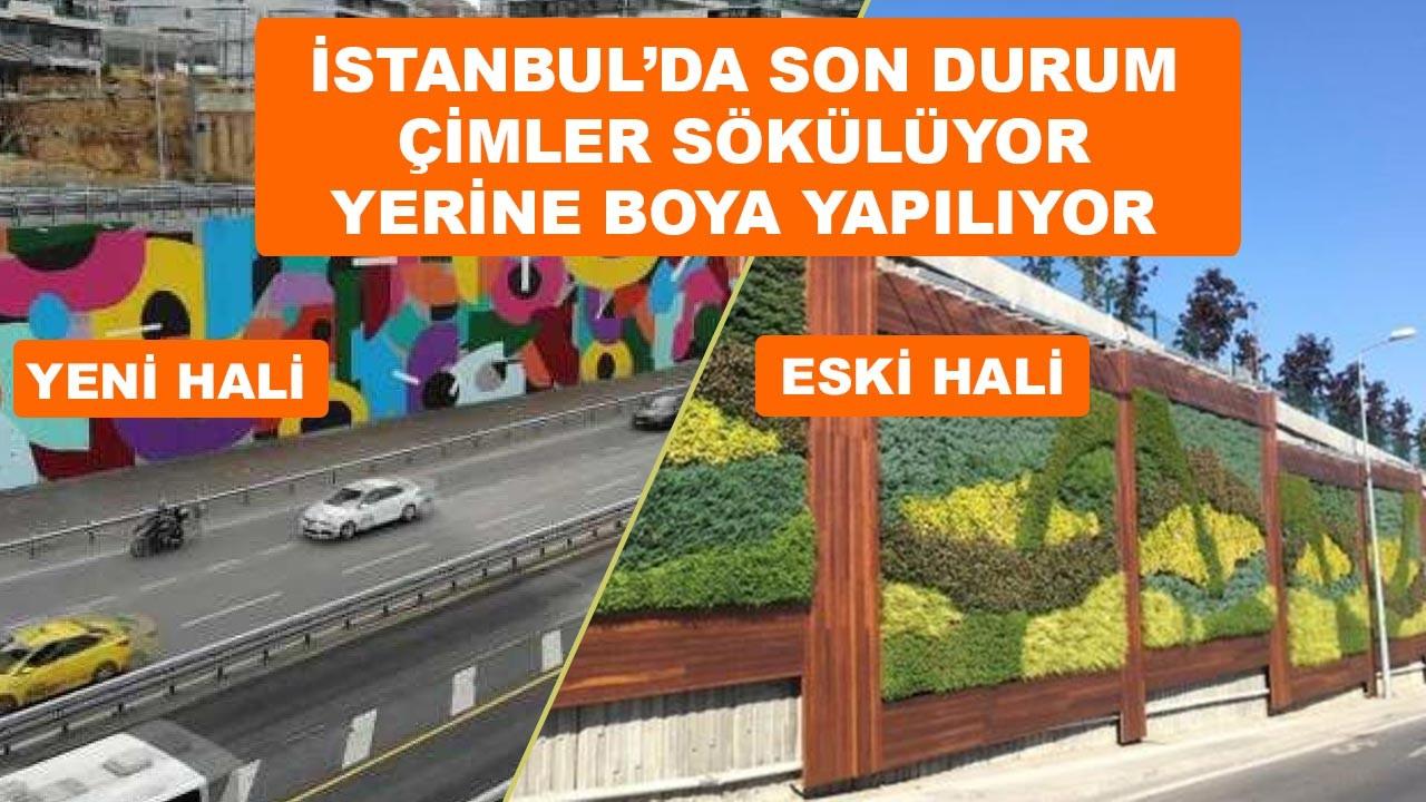İstanbul'da çimler sökülüyor yerine boya yapılıyor