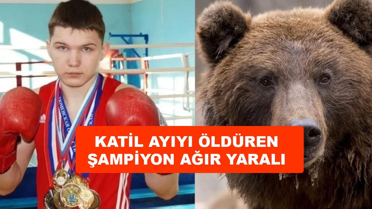 Katil ayıyı öldüren şampiyon boksör ağır yaralı