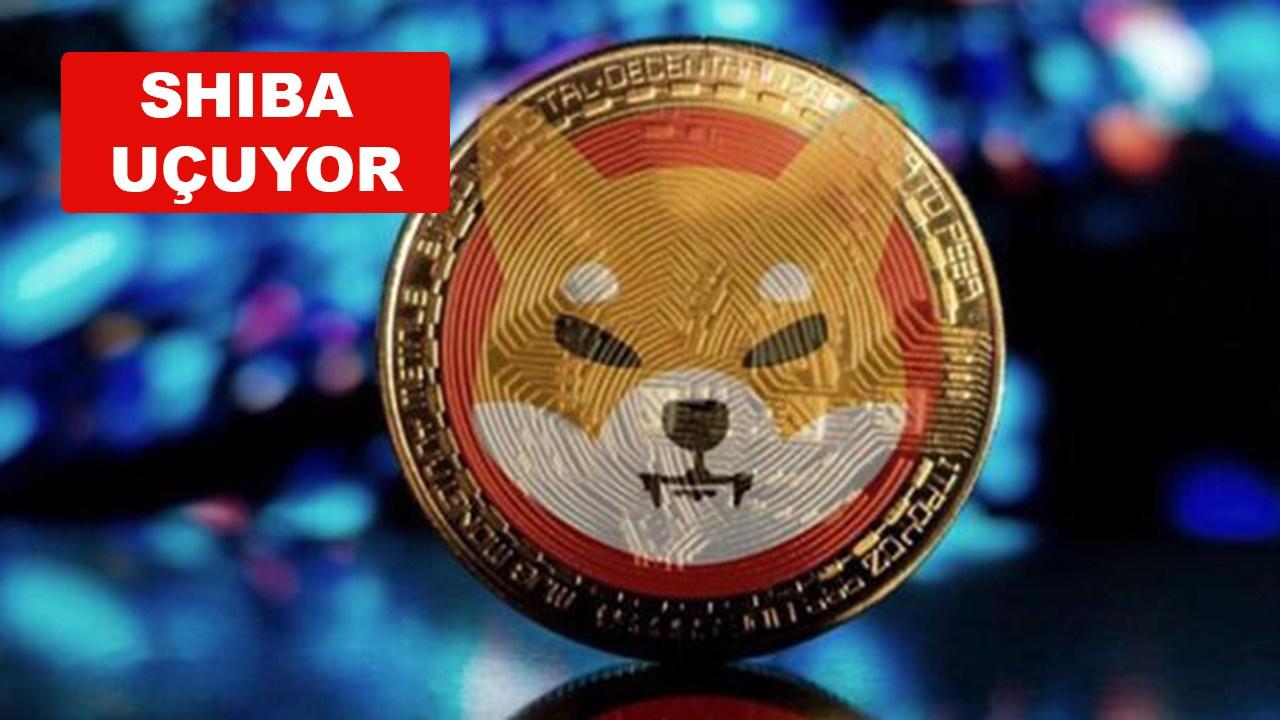 SHIBA neden yükseliyor, SHIBA Coin nedir?