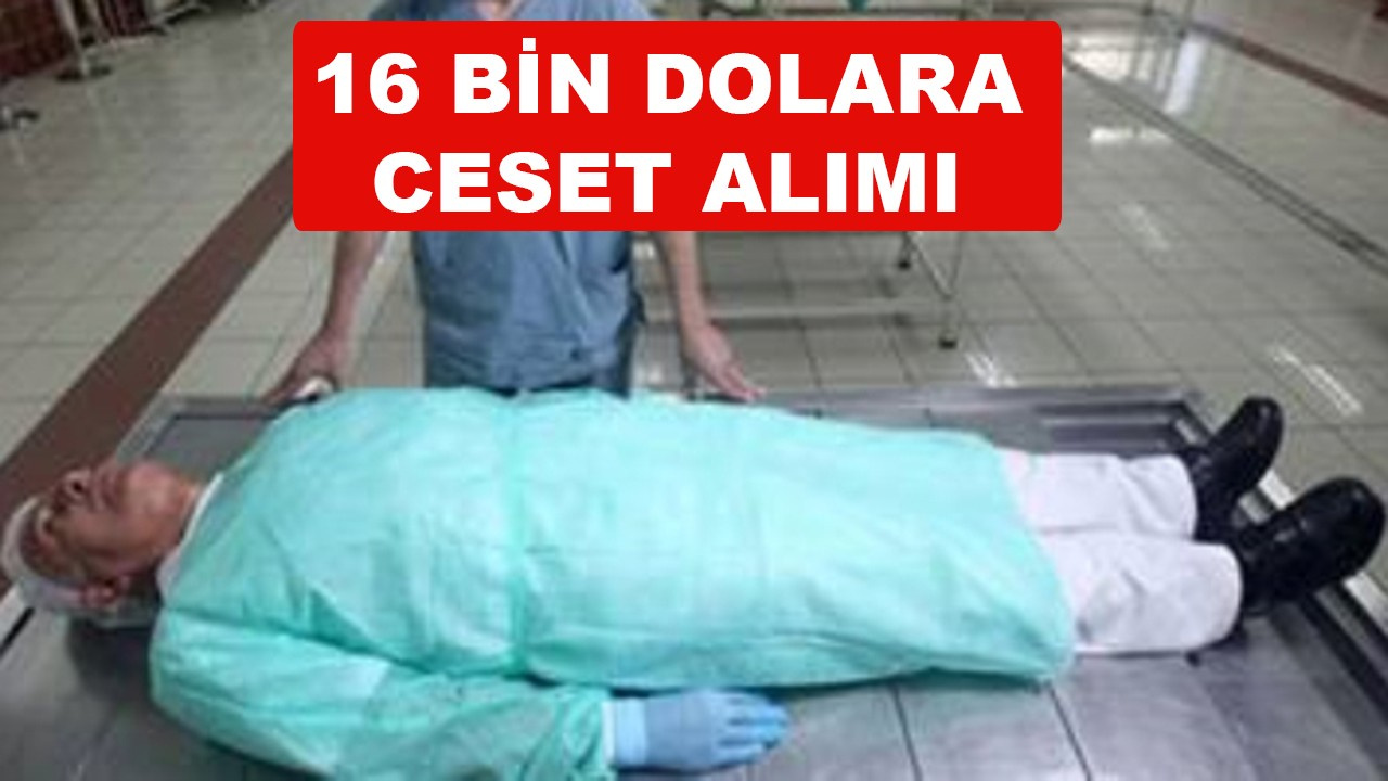 Türkiye dışarıdan 16 bin dolara 'ceset' alıyor