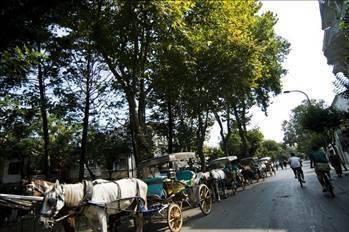 İstanbul çevresi tatil yerleri