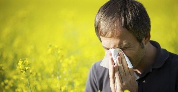 Bahar alerjisi ile baş etmenin yolları - Sayfa 4