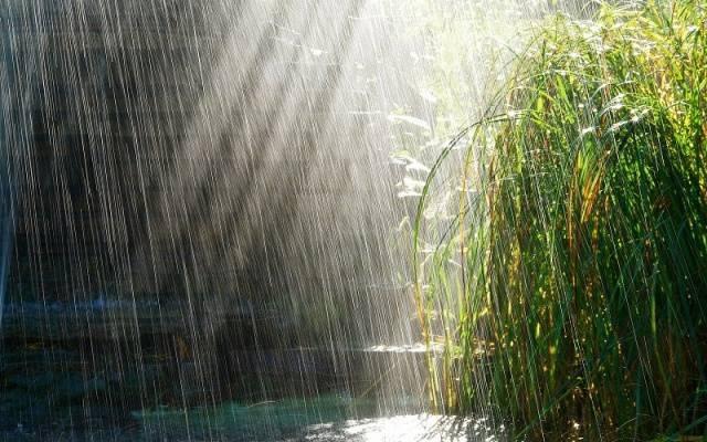 Nisan yağmurları şifa dağıtıyor