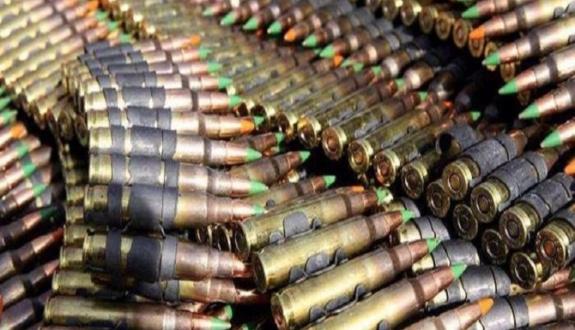 Bingöl'de silah ve mühimmat ele geçirildi