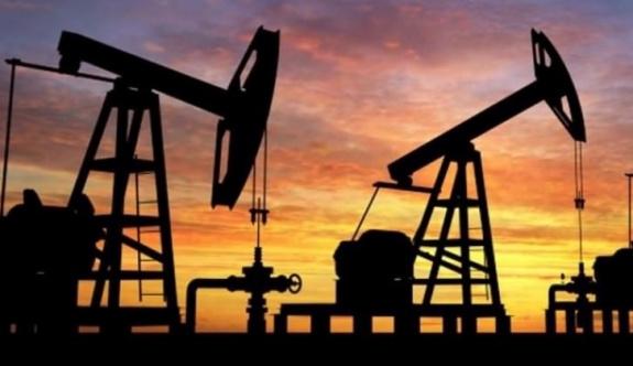 Petroldeki düşüş büyük şirketleri vurdu