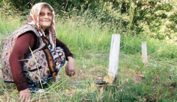 Tek bireyli aileler en fazla Tunceli'de