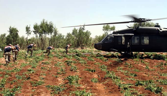 PKK tam da esrar hasadına başlamıştı!