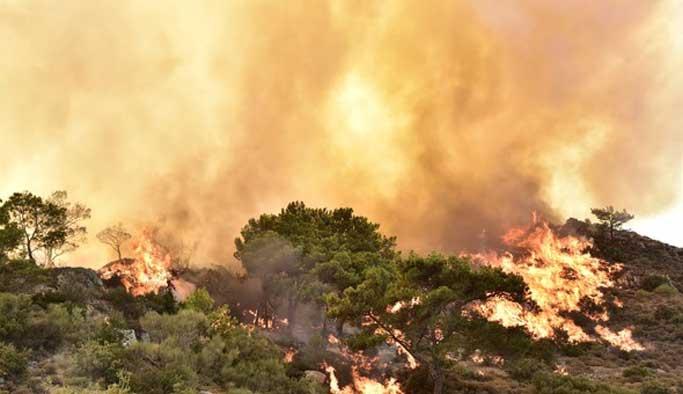 Bodrum'daki yangın söndürülemiyor FOTO