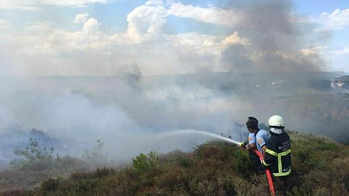 Çanakkale Biga'da orman yangını