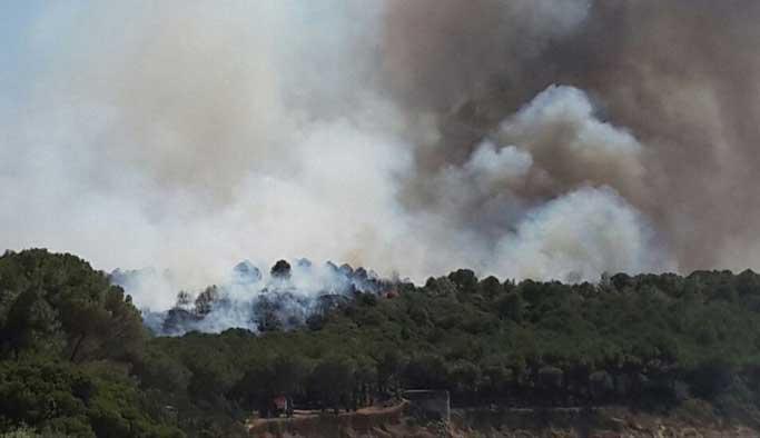 Gelibolu'daki korkutan yangın kontrol altında