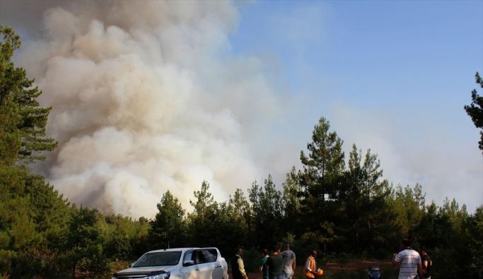 Kütahya'daki orman yangını