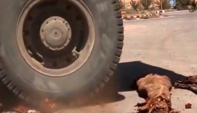 Palmira'daki Mumyaları IŞİD Kamyonetle ezmiş