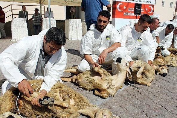 Reyhanlı'da Orient İnsani Yardım Derneği 25 kurban kesti