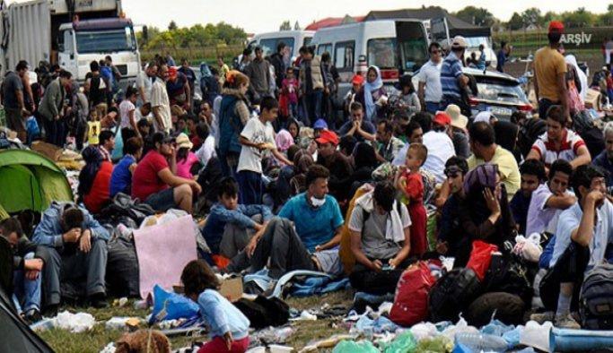 Edirne'de 105 sığınmacı ve kaçak yakalandı