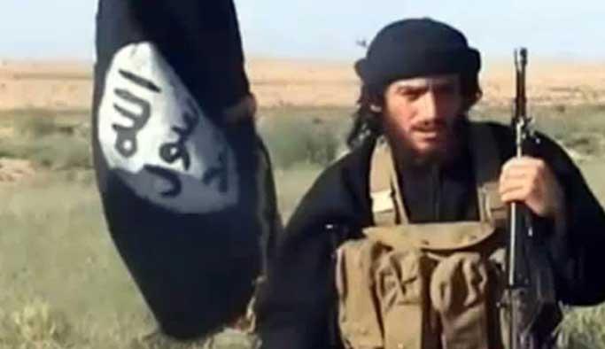IŞİD yöneticisi Adnani öldürüldü