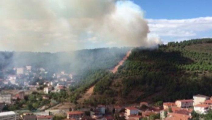 İstanbul Maltepe'de orman yangını