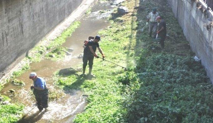 İstanbul'un dereleri temizleniyor