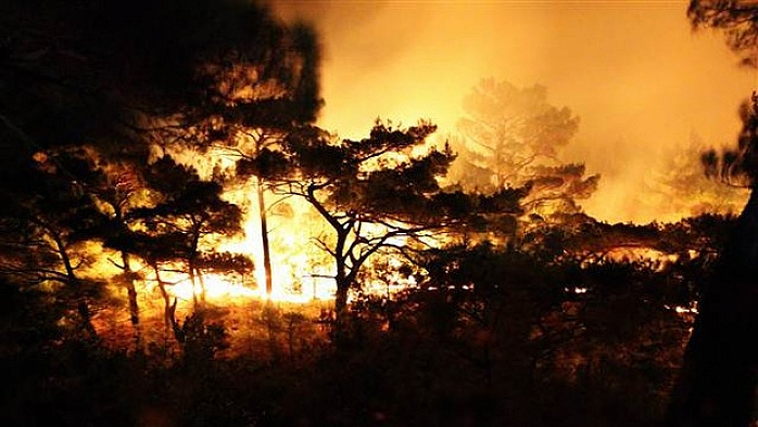 Kazdağları yanıyor, yangın saatlerdir söndürülemiyor