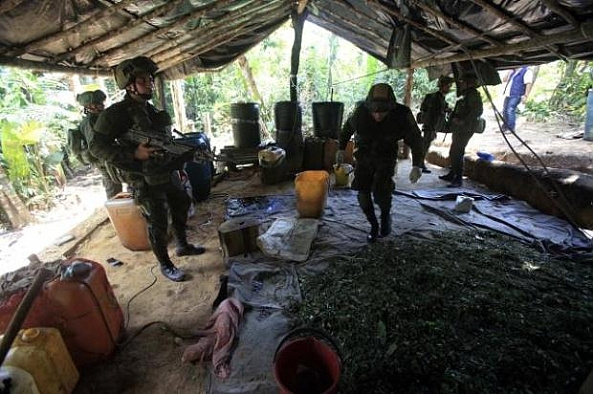 Kolombiya'da uyuşturucu operasyonu
