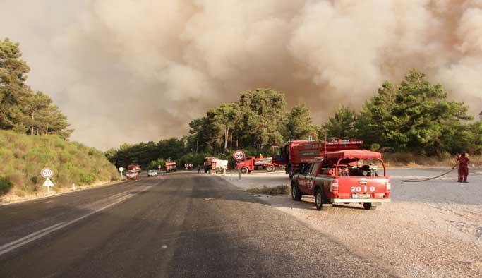 Manisa'daki orman yangını