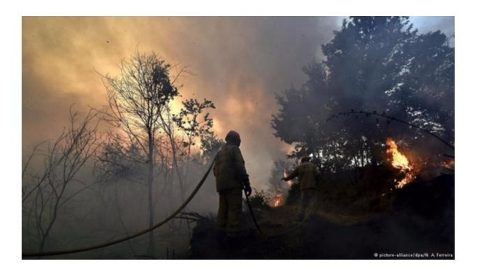 Portekiz'de orman yangını, 3 ölü