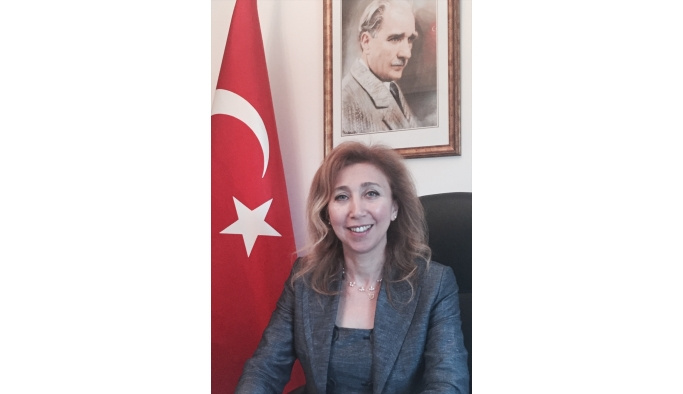 Türkiye'nin Dakar Büyükelçisi Arı: