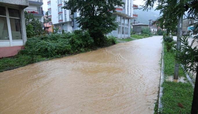 Artvin ve Rize'deki şiddetli yağış