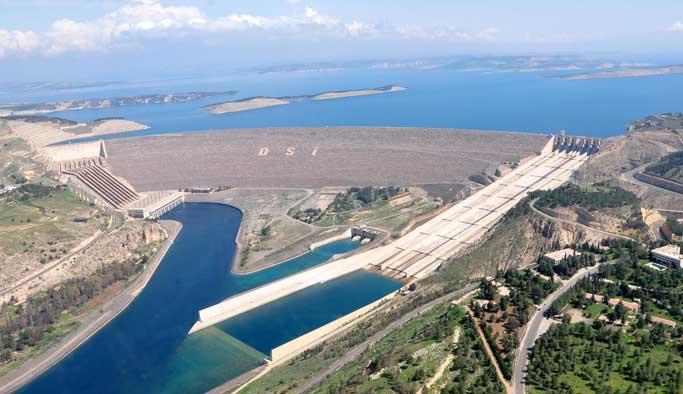Atatürk Barajı'ndaki canlılar tehlikede