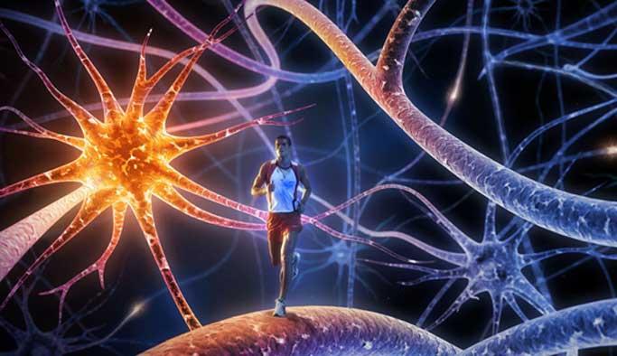Beyne iyi gelecek 5 egzersiz