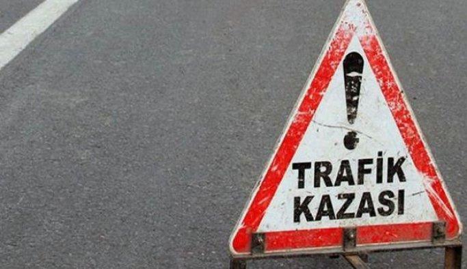 Erzincan'da minibüs elektrik direğine çarptı