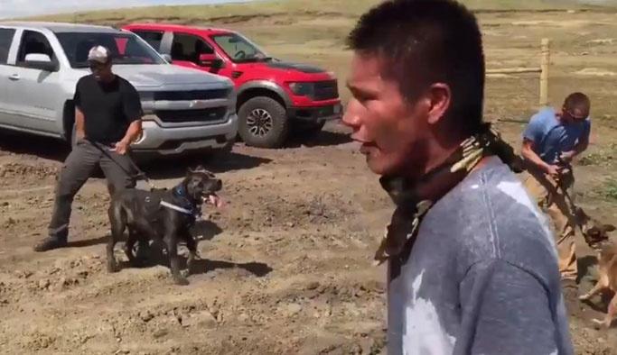 Kızılderililere köpeklerle saldırdılar