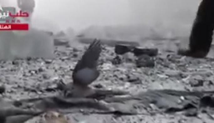 'Halep'te güvercin yaralandı' diyelim belki dikkat çeker!