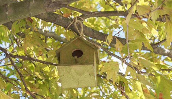 İTÜ ağaçları miniklerin kuş yuvalarıyla renklendi