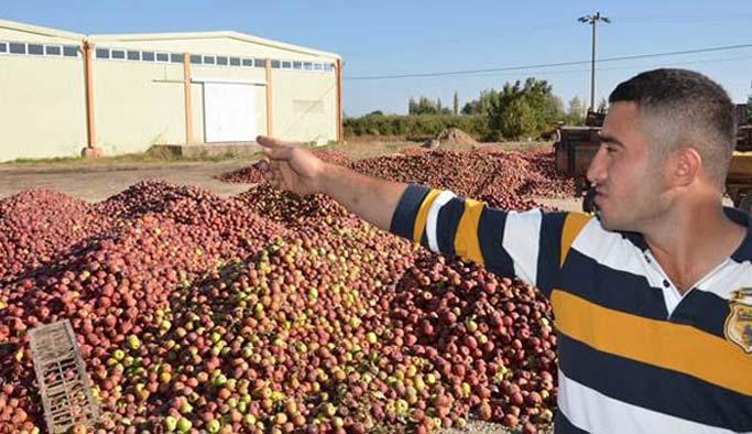 Yüzbinlerce ton elma üreticinin elinde kaldı