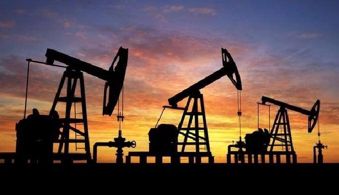 Brent petrol 47 doları aştı