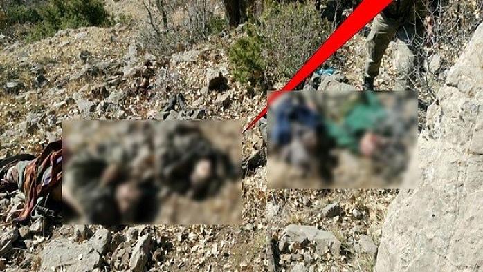 Cudi Dağı'nda operasyon, 14 terörist öldü