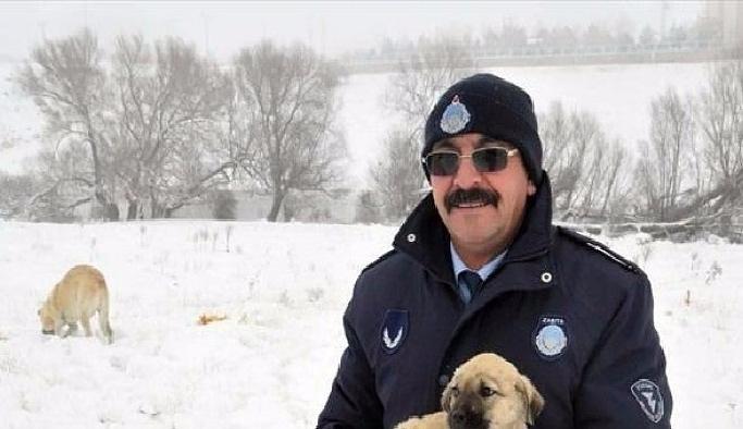 Kırşehir'de yaban hayvanlar için seferberlik