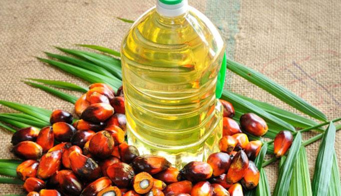 Palmiye yağı nedir, zararları nelerdir?