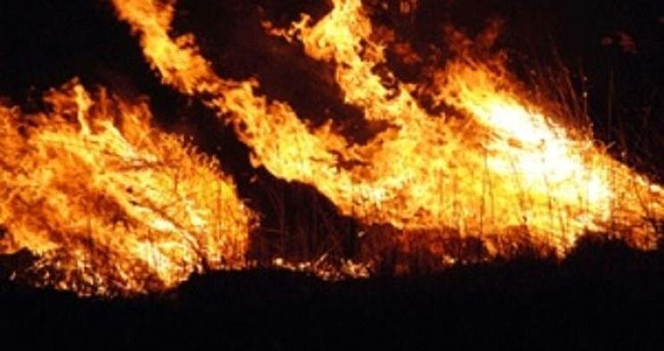Hatay'da 10 hektar alan yangından zarar gördü