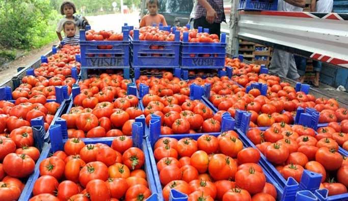 Rusya Türk domatesine ambargoyu kaldırmıyor