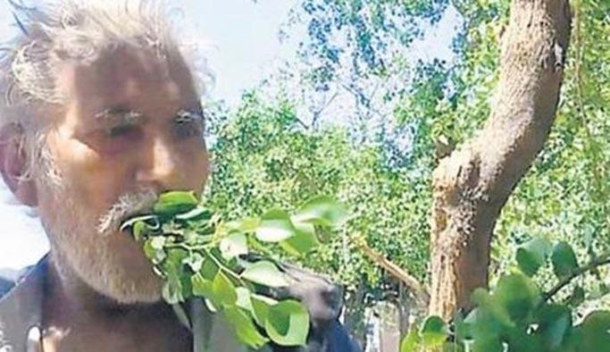 25 yıldır yaprakla beslenen adam, hastalanmıyor
