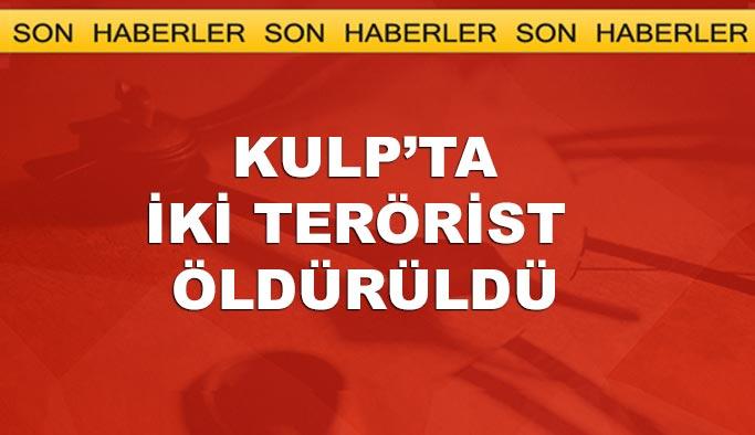 Kulp'taki operasyonda iki terörist öldürüldü