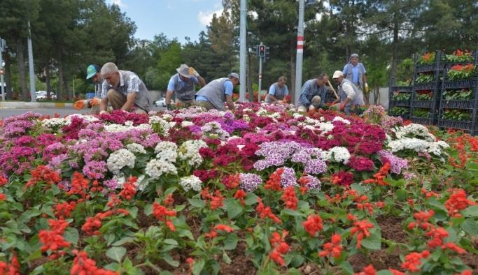 Diyarbakır'da 1 milyon mevsimlik çiçek dikiliyor