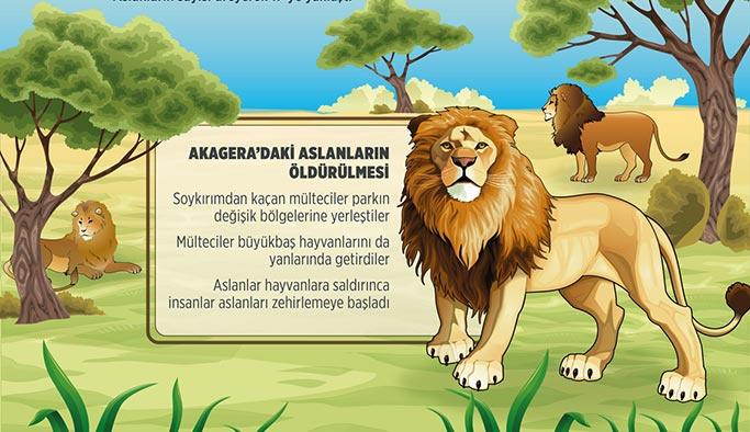 Ruanda soykırımında aslanlar da katledilmiş