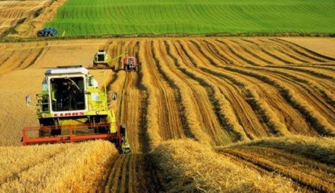 Rus buğdayı Türkiye'ye doğru yola çıktı