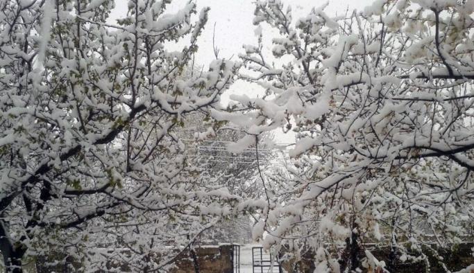 Van'da kar yağdı