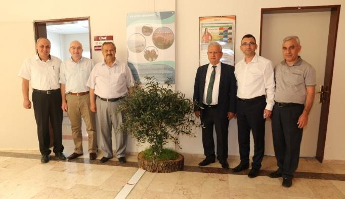 Başkan Uysal Turizm Fakültesine zeytin ağacı hediye etti