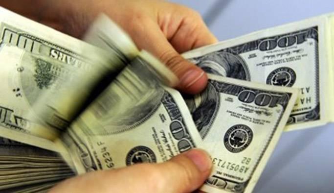 Dolar son bir ayın en düşüğünü gördü