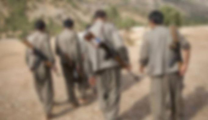 Kız çocuğunu kaçırmaya çalışan PKK'lılar yakalandı